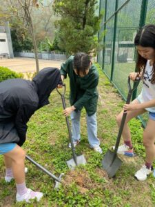 Students dig in the ground to prepare to plant the tree
